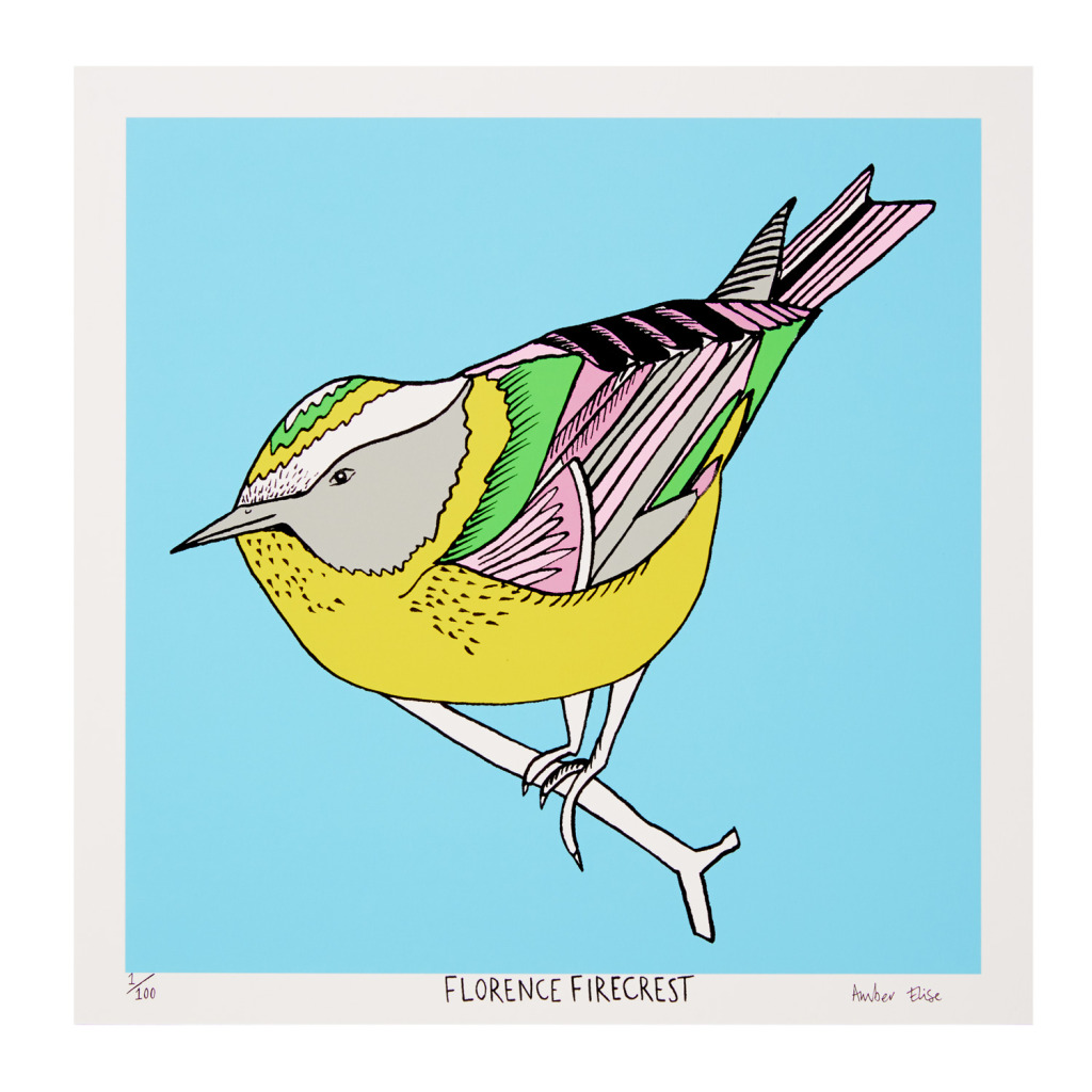 Florence-Firecrest
