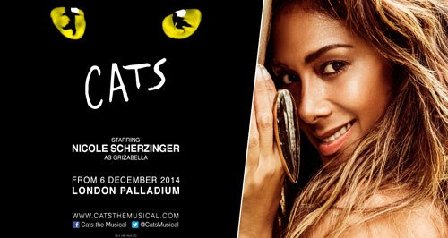 cats-nicole-500x266-1412066986-large-article-0